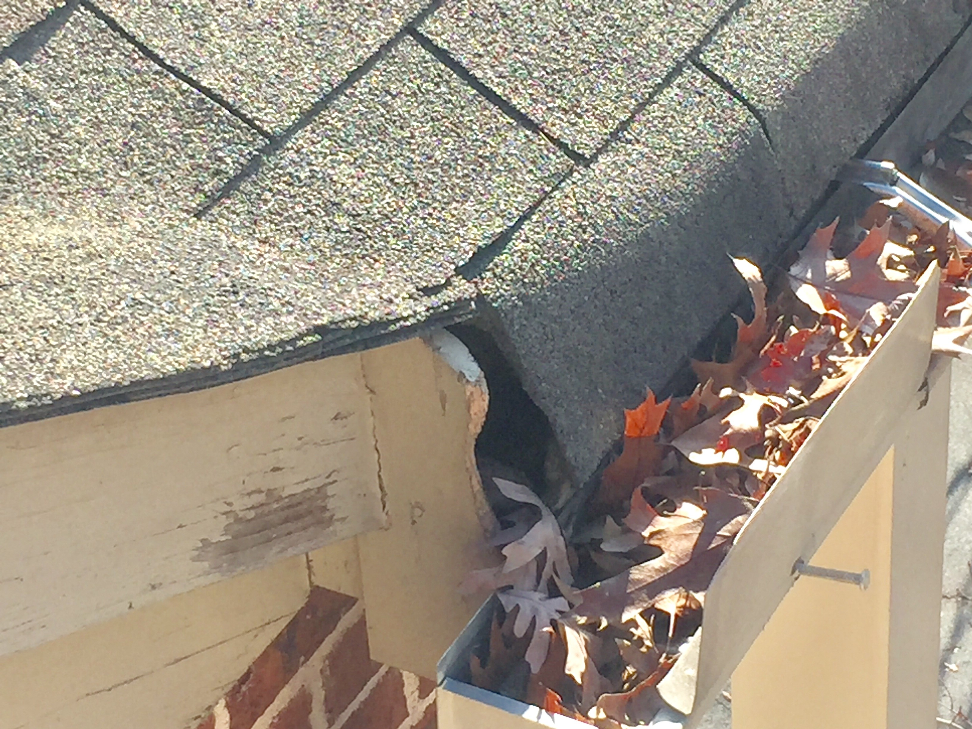 cleaning gutter lines